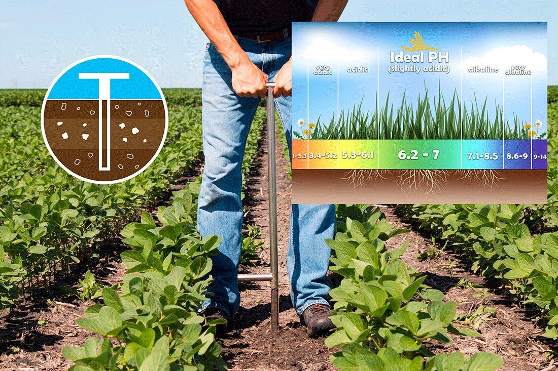 Soil-Sampling-2